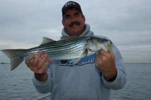 Kevin_Keifer_nice_striper_0ct